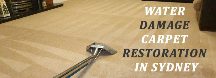 Water Damage Carpet Restoration in West Gosford
