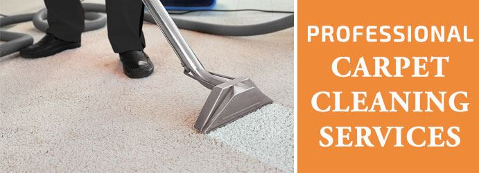 Carpet Cleaning Darling Point