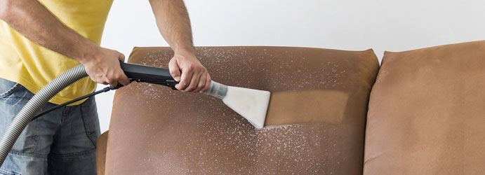 Projessional Upholstery Cleaning Service
