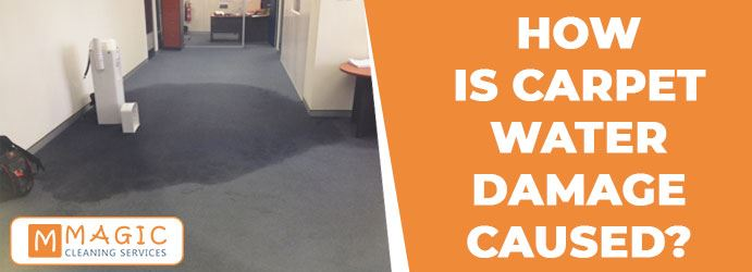 How is Carpet Water Damage Caused?