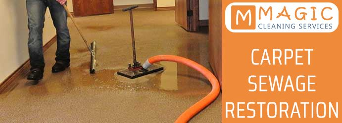Carpet Sewage Restoration Wareemba