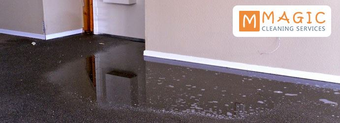 Wet Carpet Cleaning Waterfall