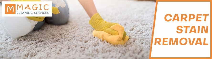 Carpet Stain Removal North Sydney