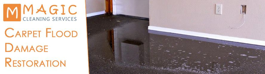 Carpet Flood Damage Restoration