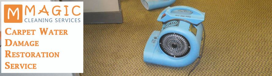 Carpet Water Damage Restoration Launceston