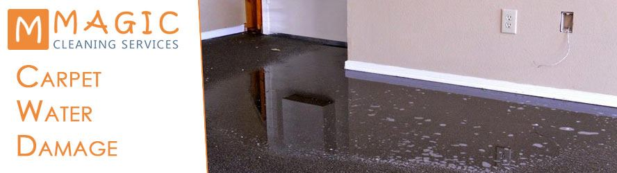 How to Prevent Water Damage in Carpets?