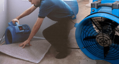 Carpet Water Extraction Sydney