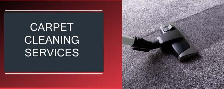 The 4 Essential Principles of Carpet Cleaning