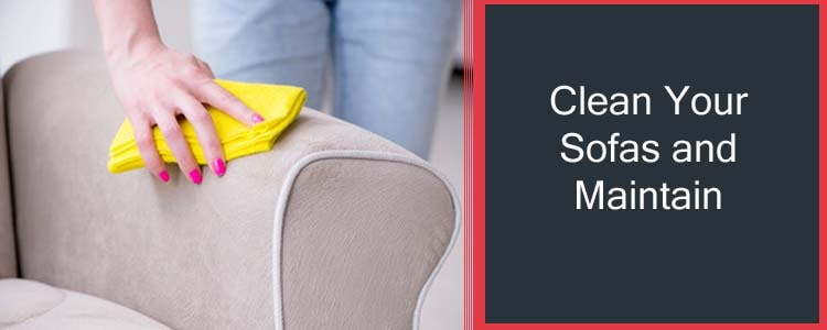 Clean your Sofas and Maintain