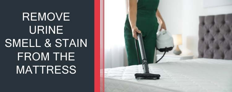 REMOVE URINE SMELL & STAIN FROM THE MATTRESS